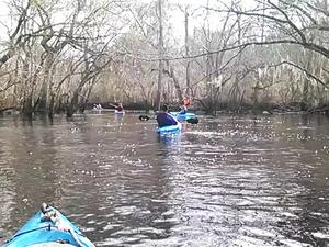 300x225 Movie: Near the end (4.7M), in Alapaha deadfalls, by John S. Quarterman, for WWALS.net, 17 January 2015