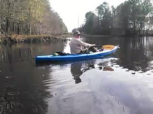 300x225 Movie: 8-foot kayak for size (8.0M), in Alapaha deadfalls, by John S. Quarterman, for WWALS.net, 17 January 2015