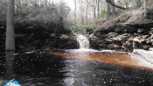 600x338 Waterfall cove, in Statenville to Sasser Landing on the Alapaha River, by John S. Quarterman, for WWALS.net, 15 February 2015