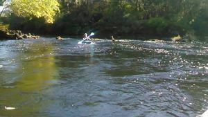 Movie: Shooting the rapids (9.6M) 30.5941982, -83.2590637