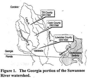 Figure 1: Georgia Watersheds