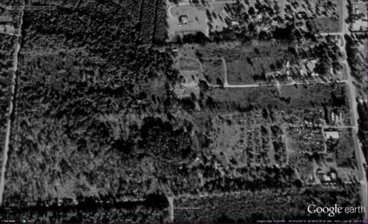 Figure 3: 1999-02-10 Still forested wetlands