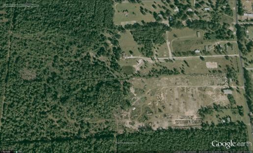 Figure 5: 2005-10-26 Still forested wetlands