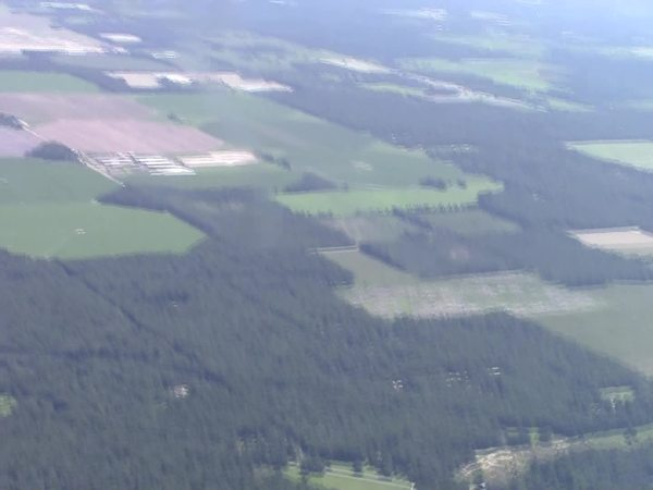 Suwannee Farms