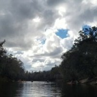 Pictures and video, Suwannee River Outing and Protest 2017-01-14