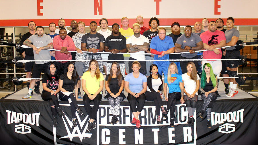 Image result for wwe tryouts