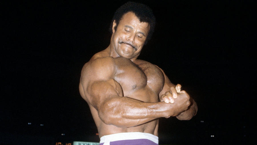 Image result for Rocky Johnson