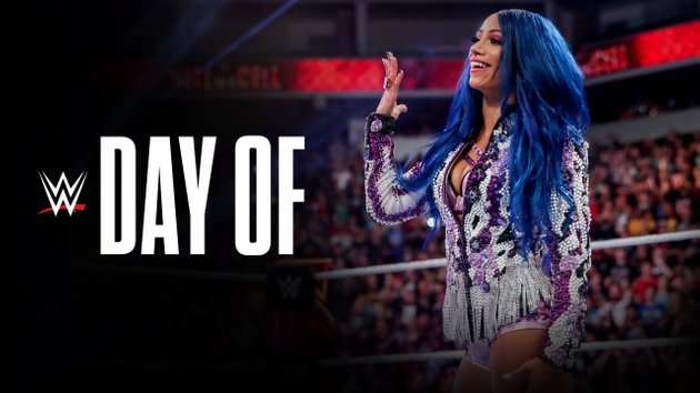 Sasha Banks WWE Day Of Hell in a Cell 2019 - WWE: Watch Day Of Royal Rumble 2020 1/14/20