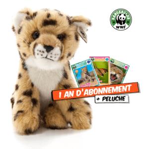 WWF guepard + abo Rangerclub