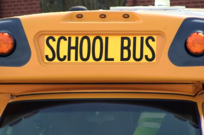 school bus_378808