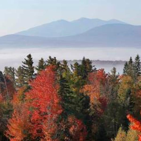 Travel Trip Fall Foliage Guide_460746