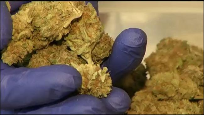 marijuana edible_692859