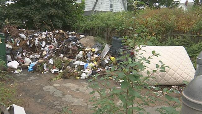 cemetery illegal dumping_1536870728206.jpg.jpg