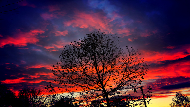 Sunset2_1542768383085.jpg
