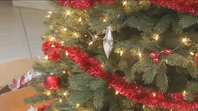 christmas decorations pests_761424