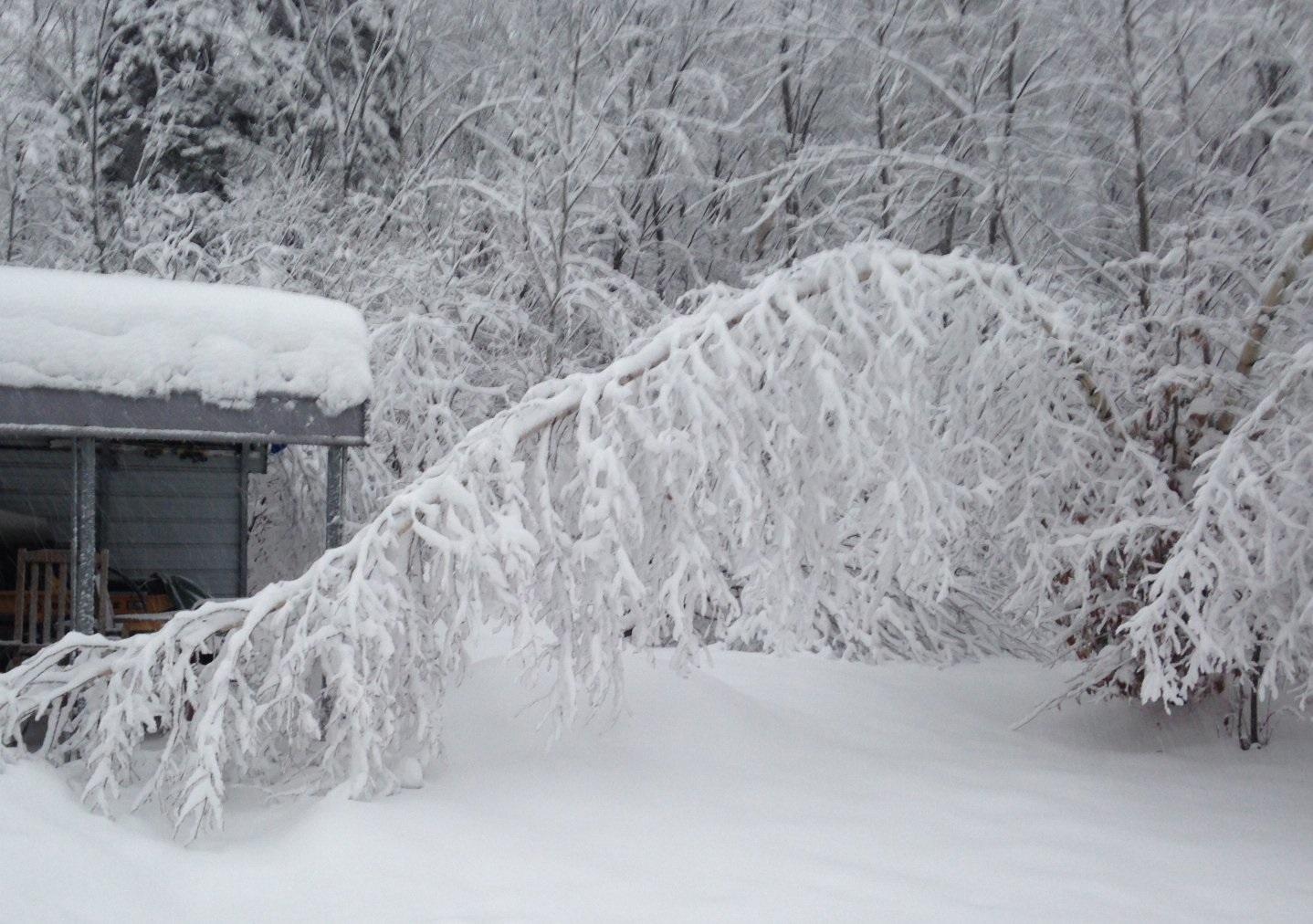 snow peru2_1543332695419.jpg.jpg