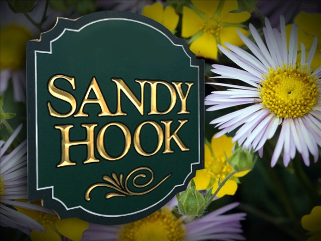 sandy-hook-flowers-sign_505562