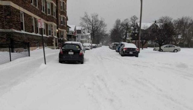 springfield snowfall resize_1548016776741.jpg.jpg