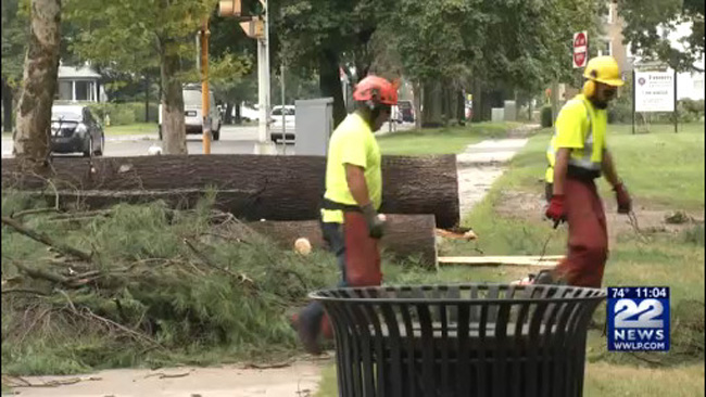 Cleanup underway in Springfield's Forest Park after Monday's