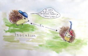 Hedgehogs in Isolation