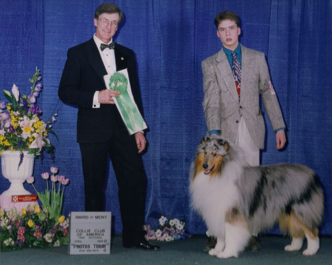 Blue Merle Collie in Virginia - Ch. Executive's Windrider of Oxford