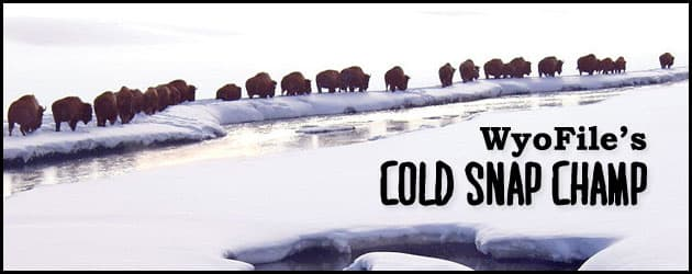 WyoFile's Cold Snap Champ