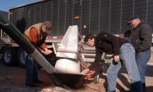 Steve Nally and David DeFazio inspect corn samples