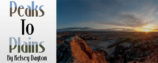 Desert art to raise awareness of fragile landscape