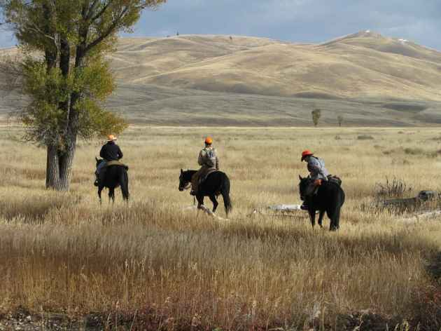 Hunting is normally popular on the National Elk Refuge, but until the government reopens national wildlife refuges across the country are closed to all public use, including hunting and fishing. (Lori Iverson / USFWS — click to enlarge)