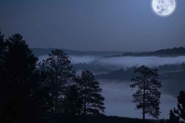 Moon over foggy valley (Photo by Jason Plett - click to enlarge)
