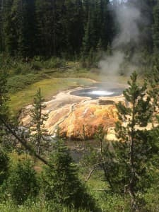 """It feels a bit like entering the """"Land Before Time,"""" when headed to Mr. Bubbles in Yellowstone's backcountry. (Photo by Kelsey Dayton - click to enlarge)"""
