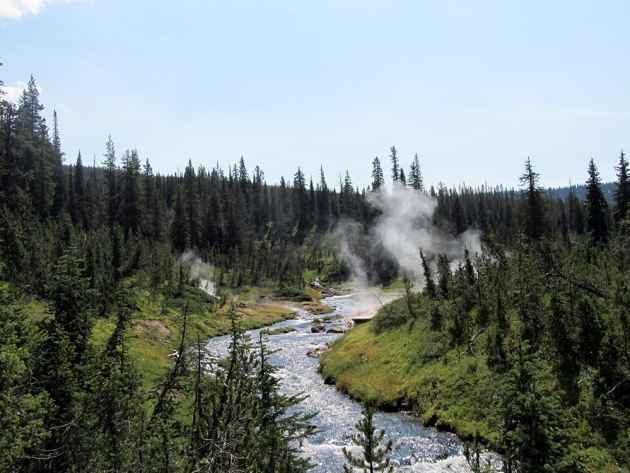 Steam rises from thermal features in Yellowstone's backcountry. (Photo by Kelsey Dayton - click to enlarge)