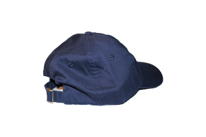 wyoming rugby bison hat