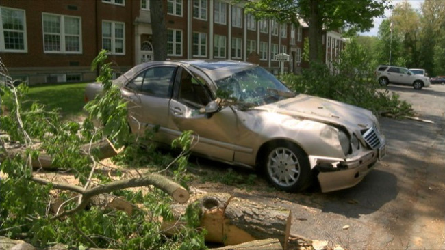 A Mercedes was smashed by a tree in Poland, Ohio, during Monday night's storm_40255