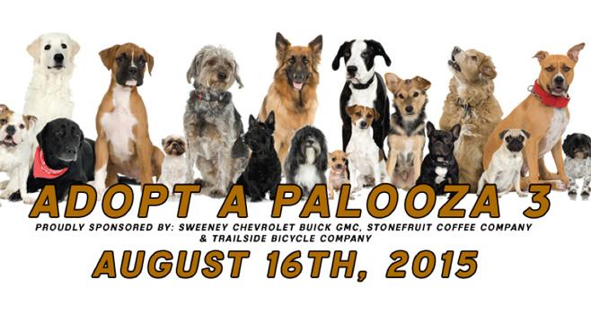 Adopt A Palooza_47890