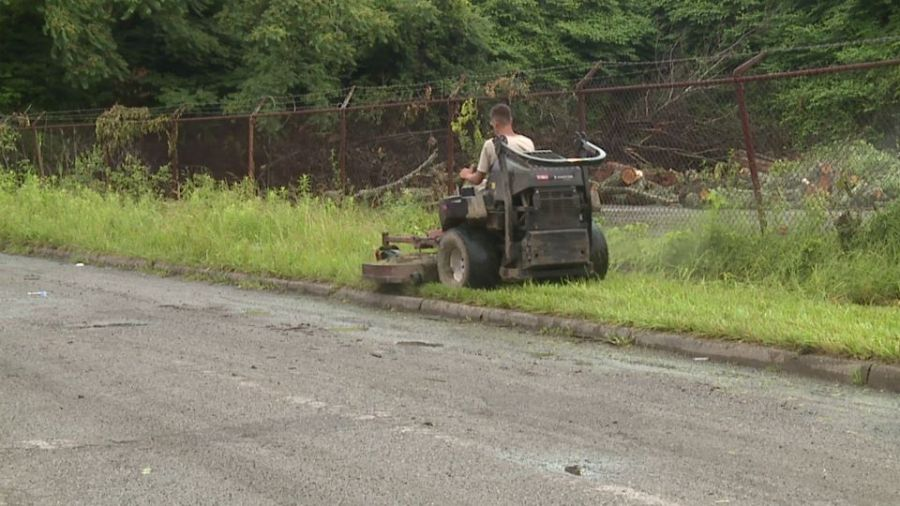 Rain impacts Campbell landscaper
