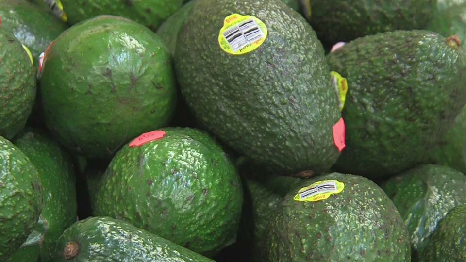 Len Rome's Local Health: Looking for a new diet this year?