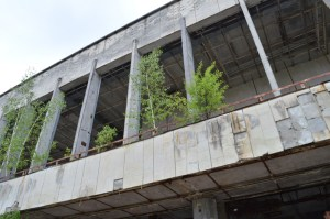Plants grow inside of one of the abandoned building of Pripyat, Ukraine