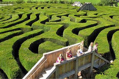 Vườn Mê cung Longleat Hedge