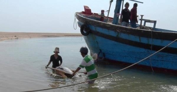 80 tàu cá ở Phú Yên chưa thể ra khơi do cảng bị bồi lấp