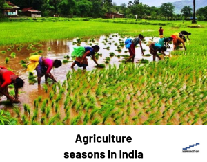 cropping season in India