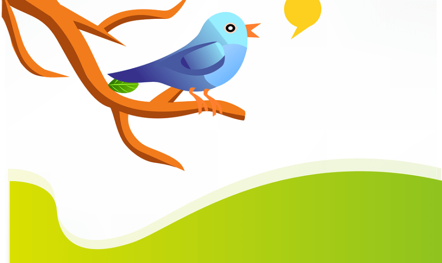 Twitter Now Ask Its Users to Pay for a Monthly Automatic Tweet Promotion Service