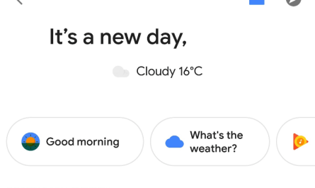 Google Assistant personal overview