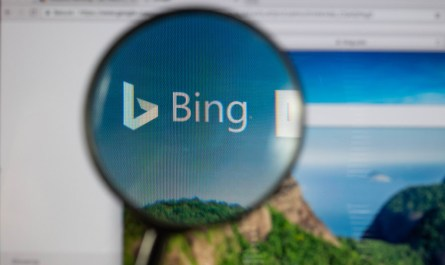 Bing public URL submission tool