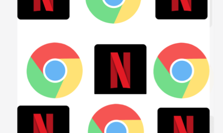 Chrome Netflix extension