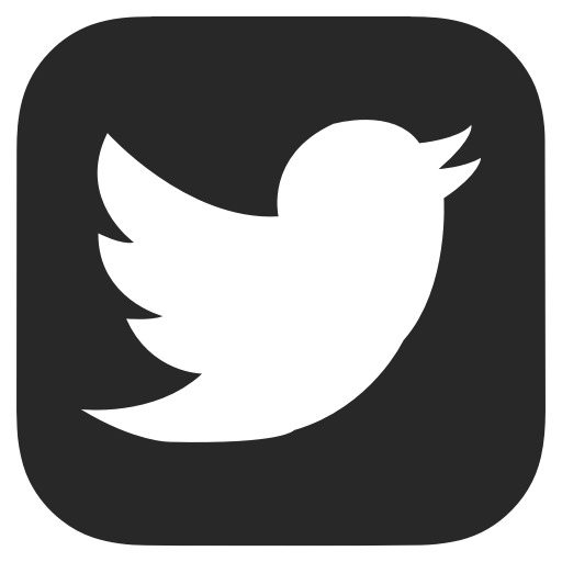 Twitter bug disclosed some users' location data