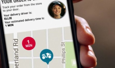 Dominos pizza deliver GPS tracking
