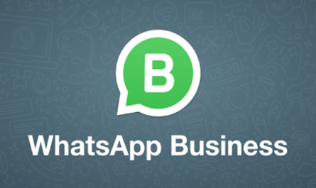 Latest WhatsApp Business Beta Allows Companies to Conceal their Online Status