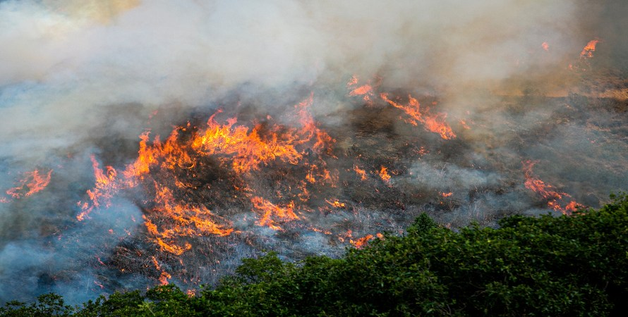 Google Maps Wildfire Tracking Layer is Rolling Out Across the Globe