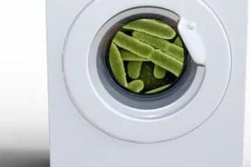 bactérias roupas